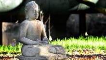 TOÀN NHẬT THIỀN SƯ - NGƯỜI MUỐN ĐƯA TINH THẦN PHẬT GIÁO ĐỜI NHÀ TRẦN XUỐNG CHO TRIỀU ĐẠI TÂY SƠN